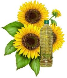 Sell Edible Refined sunflower oil and crude