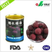 Manufacture of canned Arbutus(Waxberry) in l.s
