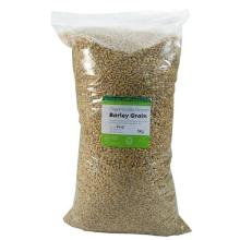 BARLEY FEED
