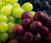 Grade A Fresh Red Globe Grape