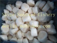 IQF Sea Scallops meat