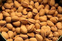 100% Quality Pistachio Nuts affordable price