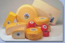 Gouda Edam Cheese