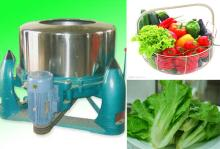 Hot Sale Vegetable Drying Machine