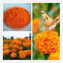 100% Natural Marigold Extract Powder for sale