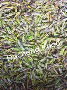 Frozen Grass Hoppers(uncooked)