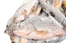silver fish yellow fish and stockfish for sale all Norway
