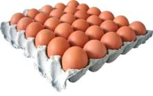 Fresh Chicken Eggs, Chicken Eggs Exporters, Chicken Eggs Supplier