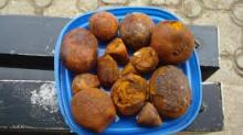 cow and ox gallstones