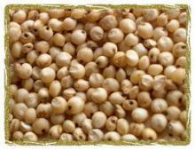 Sorghum Grain Meal Grade A