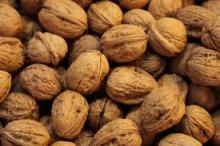 Sell Offer Walnuts And Walnuts Kernels 50% Discount