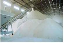 Sell Offer Refined Sugar 50% Discount