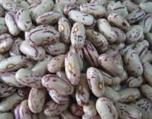 Light Speckled Kidney Beans Grade A