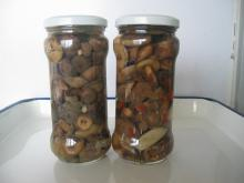 Canned Suillus Marinated with High Quality