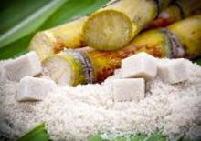 45 cane sugar / European Beet Sugar