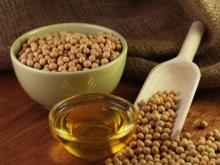 Soybeans seeds / Soybean Oil
