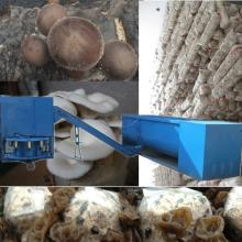 Oyster mushroom cultivation machine for sell