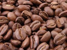 Cofffee Beans for sale