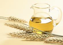 Wheat Germ Oil in Bulk Natural Oil