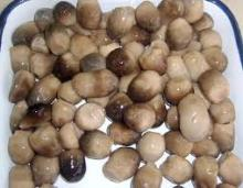 Delicious canned straw mushrooms