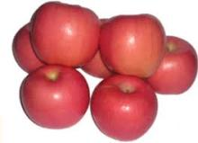 Sweet delicious fresh red fuji apple
