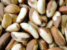 Quality Brazil Nuts