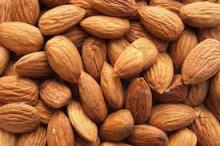 Almonds nuts and kernel in stock for sale
