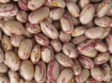 Light Speckled Kidney Beans Grade A