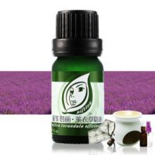 Guangzhou Wholesale OEM Lavender Essential Oil