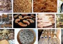 fish,frozen grouper,frozen silver pomfret,hilsa fish,sardin,ribbon ,ell ,queenfish,fish,fish,salmon,