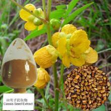 wild jujube seed extract