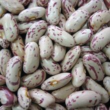 Light Speckled Kidney Beans On Sale