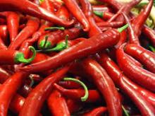 Disc Mill Spice Grinder/ Red Chili Pepper Grinder /  Tea   Leaves  Grin ((( http://toprakagro.com/ )))