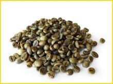 Robusta Coffee best price FROM VIETNAM HANFIMEX