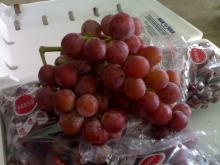 China red globe grapes