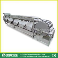 OG-606 potato and onion sorting machine root vegetable granding machine