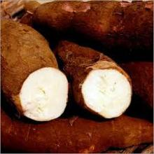Modified Cationic Cassava Starch