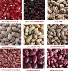 Red Speckled Kidney Beans,Dark Red Kidney Bean,Black, White and Red Kidney Beans