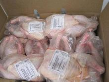 HALAL GRADE A FROZEN WHOLE CHICKEN AND FROZEN CHICKEN FEET/ PAW FOR SALE