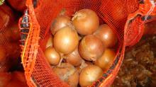 Fresh Yellow Onion for sale