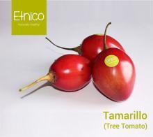 Tamarillo ( Tree Tomato )