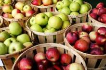 Grade A Apples For Sale
