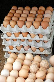 """FRESH BROWN POULTRY EGGS"""""""