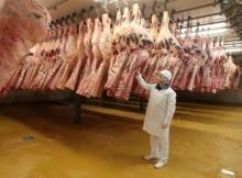 Grade A Frozen Beef Meat, Topside, Striploin, Knuckle, Shin Shank, Cube Roll, Tenderloin, Eye Round