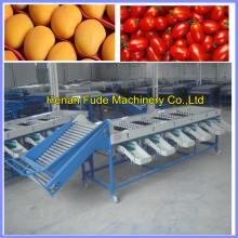 Cherry tomato grading machine , dates grading machine