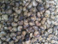 Grade A Cashew Nuts