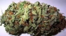 High Grade Medical Marijuana,Cannabis Oil and Hash for sale!!