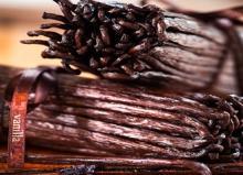 Gourmet Vanilla Beans