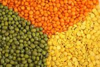 Green and Red Lentils