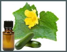 Refined Cucumber Oil